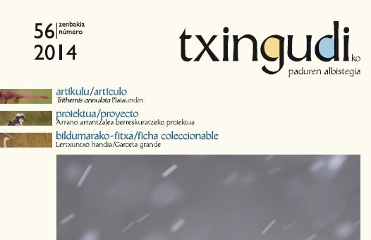 Txingudiko_paduren_albistegia_56
