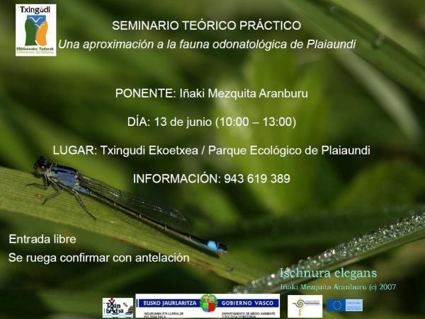 Seminario_odonatos_de_plaiaundi